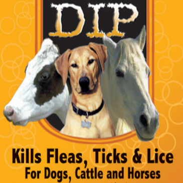DIP Kills Fleas Ticks & Lice